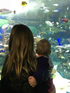 Aquarium - Places to go with your 1 year old