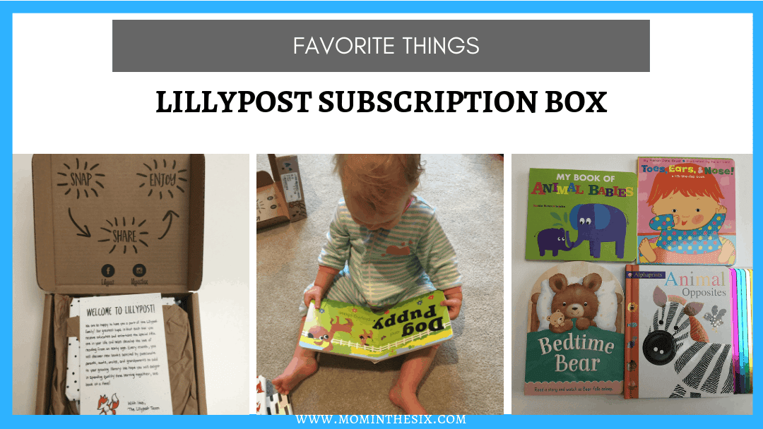 Lillypost Book Subscription Box Review - Favorite Things