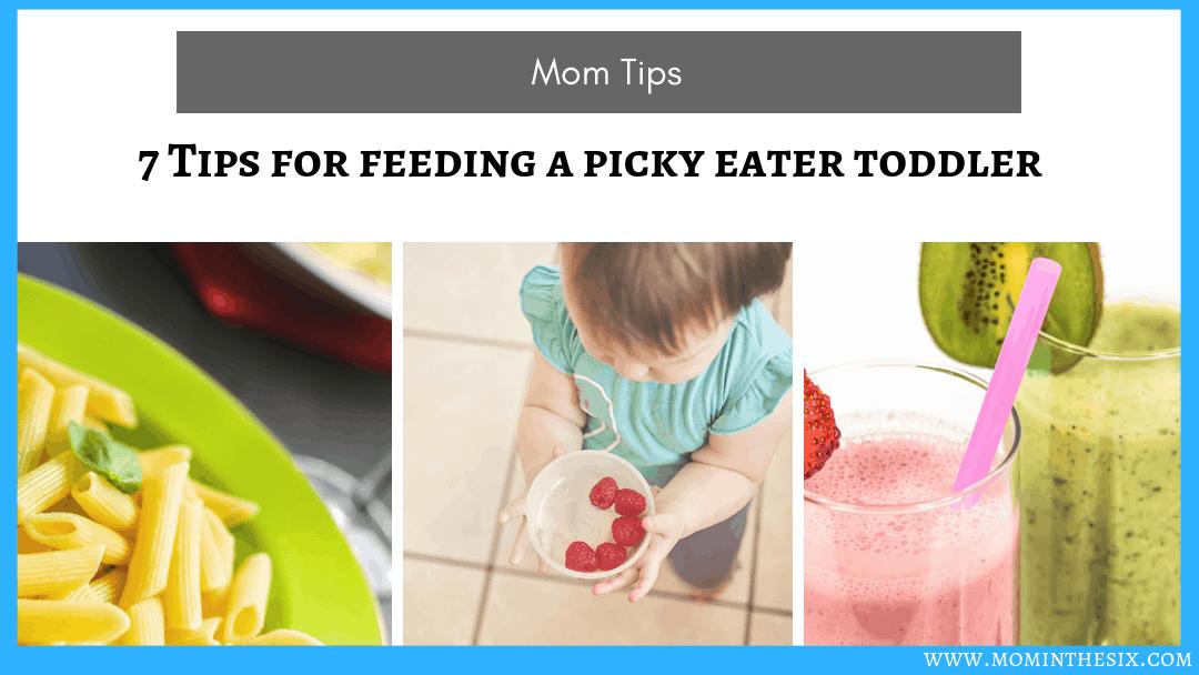 7 Tips for Feeding a Picky Eater Toddler