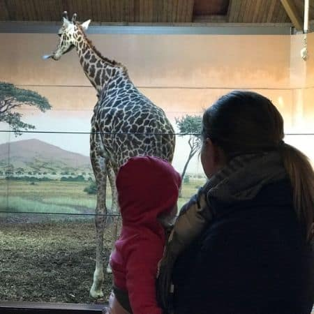 mother and daughter looking at a giraffe