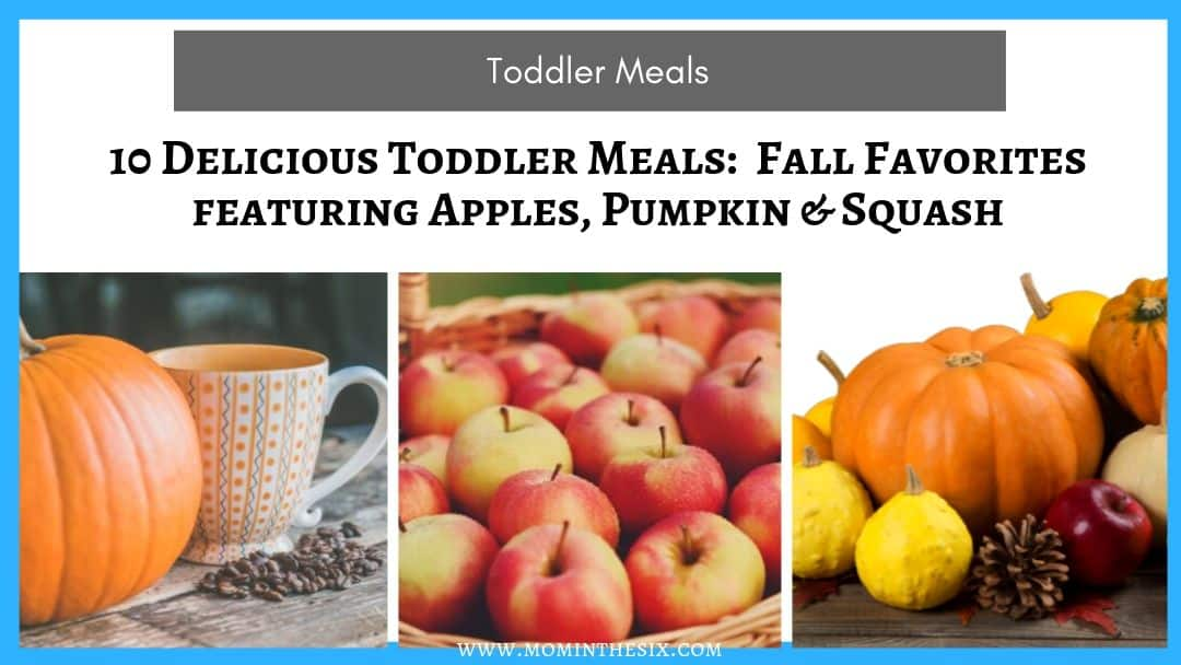 10 Delicious Toddler Meals – Fall Favorites