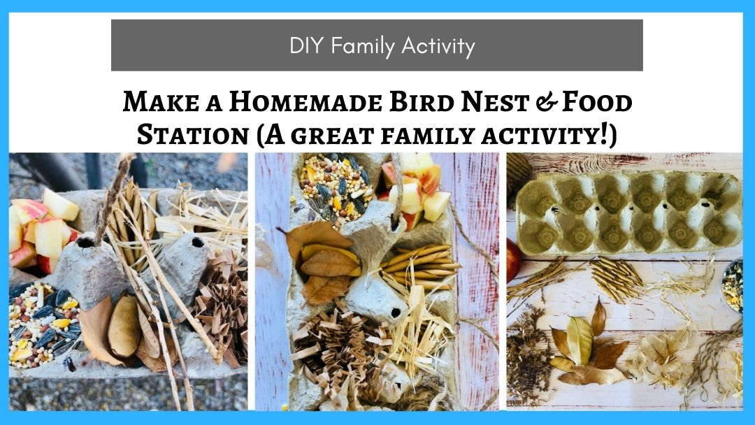Make a Homemade Bird Nest & Food Station (A great family activity!)