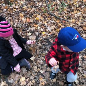 1 year old places to go forest school