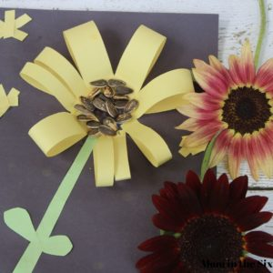 Sunflower art seed project